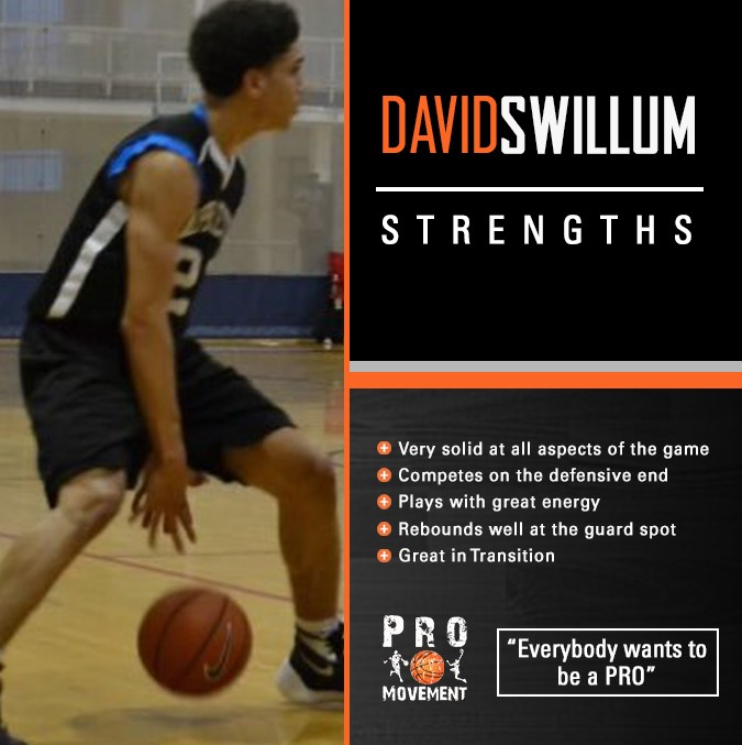 davidswillumstrenghts